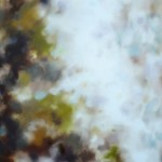 Moonscape Terre